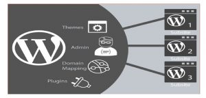 wordpress -multiwebsite