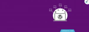 What is WordPress – Multi Website?