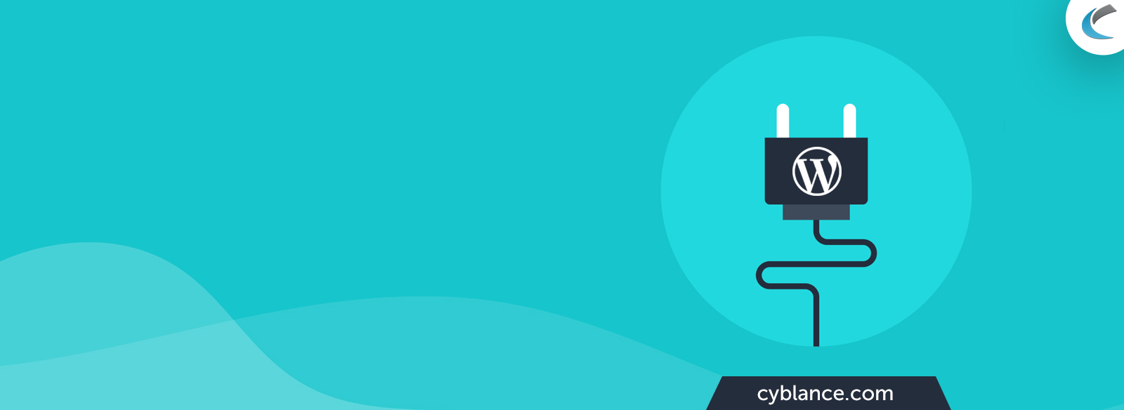 Hire Wordpress Developer Banner