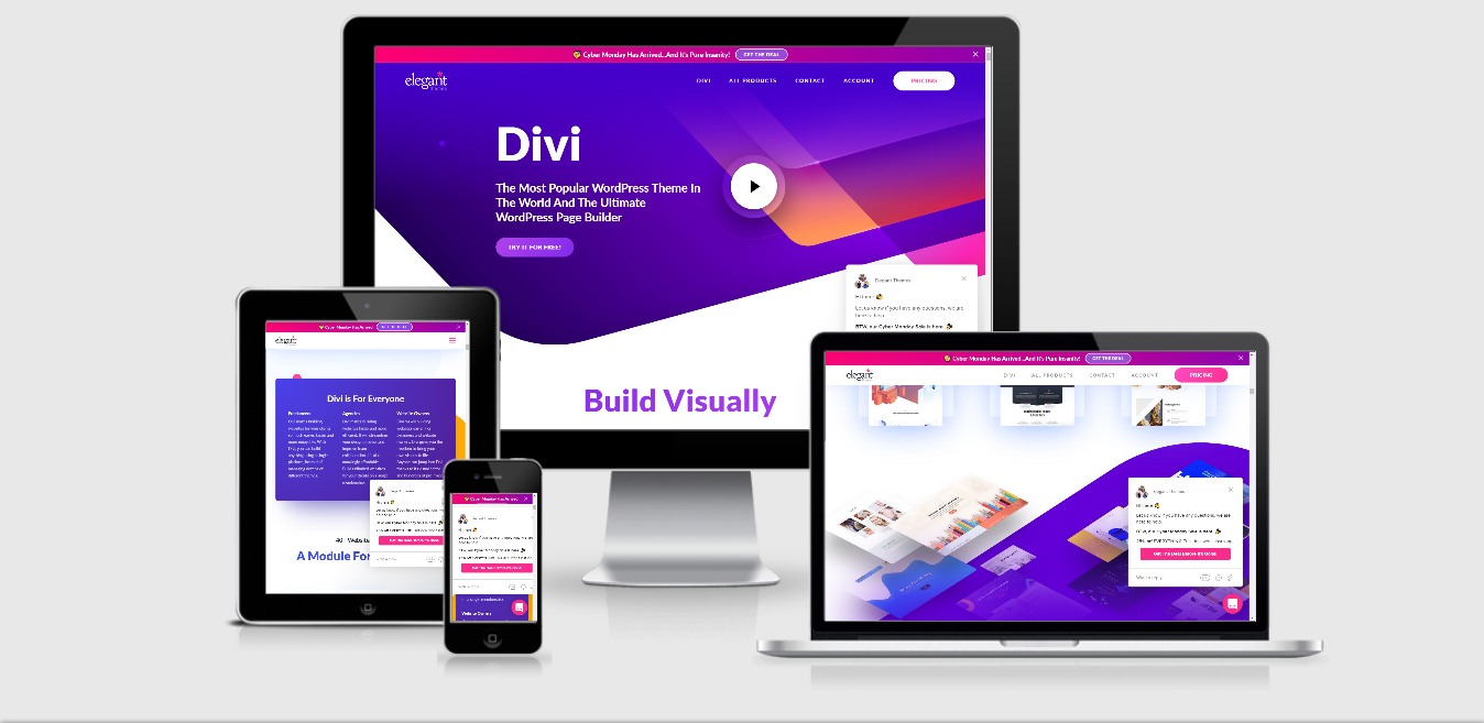 wp-divi Theme