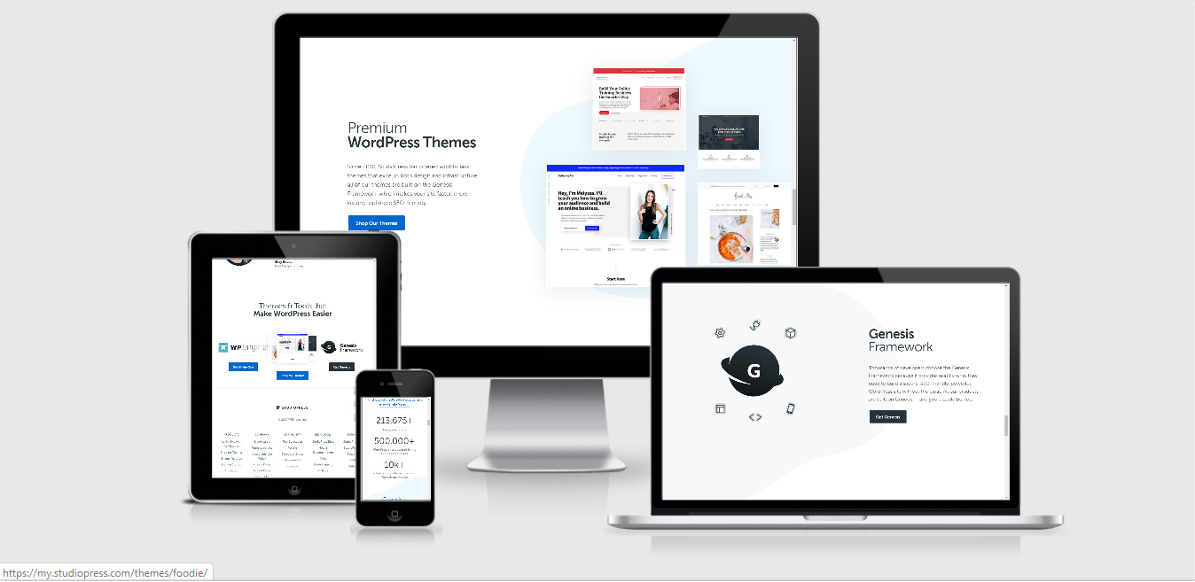 wp-studiopress theme